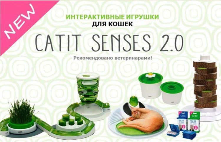 CatitSenses
