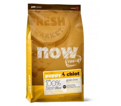 NOW! NATURAL Holistic Корм Беззерновой для Щенков с Индейкой, Уткой и овощами (Fresh Puppy Recipe Grain Free 28/18) 2,72кг.