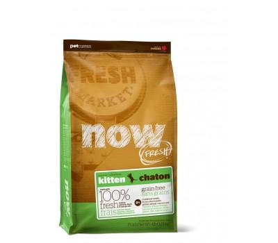 NOW Natural holistic Беззерновой корм для Котят с Индейкой, Уткой и овощами (Fresh Grain Free Kitten Recipe 33/20)
