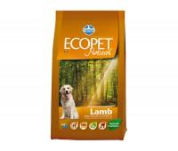 Ecopet Natural Lamb  - для взрослых собак с проблемами пищеварения и аллергией