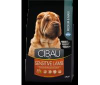 Cibau Sensitive Lamb Medium & Maxi - для взрослых собак с чувствительным пищеварением и аллергией