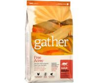 Корм GATHER organic (Petcurean) органический корм для кошек с курицей, GATHER Free Acres Chicken CF