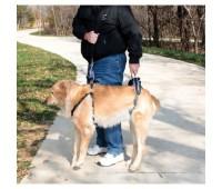 Шлейка для пожилых, травмированных собак Large