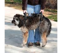 Шлейка для пожилых, травмированных собак Medium