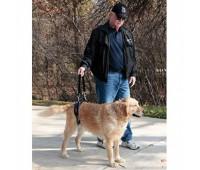 Пояс для пожилых, травмированных собак Large