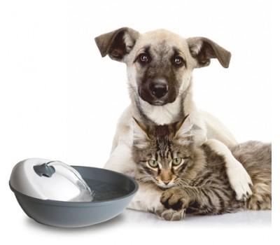 Автоматическая поилка для кошек и мелких пород собак Feed-Ex Spring