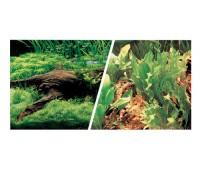 Фон Японские растения/Свежая вода 30см 7,5 м