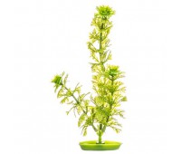 Растение пластиковое зеленое Амбулия 50 см