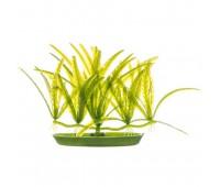 Растение пластиковое зеленое Эхинодорус