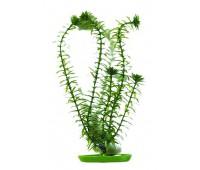 Растение пластиковое зеленое Элодея 13 см