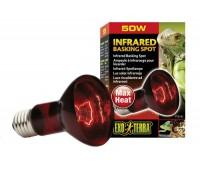 Инфракрасная лампа Heat Glo, R 20, 50 Вт