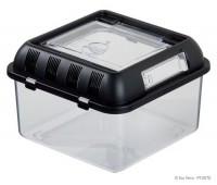 Контейнер для разведения Breeding Box малый (205x205x140 мм)