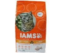 Iams® ProActive Health™ Adult для кошек с курицей 3 кг