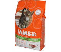 Iams® ProActive Health™ Adult для кошек с ягненком 3 кг